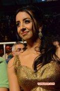 Latest Photos Tamil Actress Sanjana Galrani 3105