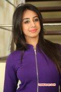 Recent Pic Sanjana Galrani Indian Actress 6564