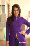 Recent Wallpaper Indian Actress Sanjana Galrani 4754