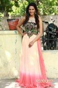 Feb 2015 Stills Film Actress Sanjana Singh 8428