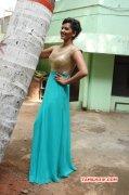New Album Heroine Sanjana Singh 5987