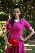 New Galleries Tamil Movie Actress Sanjana Singh 7123