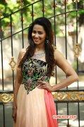 Sanjana Singh South Actress Recent Wallpapers 4445