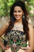 Sanjana Singh Tamil Movie Actress Latest Photo 8711