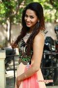 South Actress Sanjana Singh Albums 7229