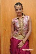 Image Movie Actress Sanjana 4524