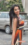 Indian Actress Sanjana Latest Photos 2770