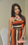 Photos Sanjana Indian Actress 7907