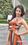 Recent Photos Cinema Actress Sanjana 2302