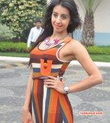 Recent Still Movie Actress Sanjana 331