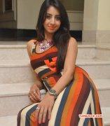 Sanjana Tamil Movie Actress New Pic 8749