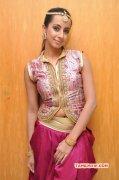 Tamil Heroine Sanjana Album 2256