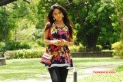 Sanyathara Film Actress New Gallery 2565
