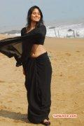 Sanyathara Movie Actress Albums 4509