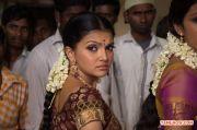 Saranya Mohan Stills 327