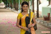 Saranya Mohan Stills 8749