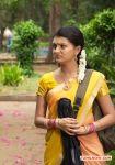 Saranya Mohan Stills 9973