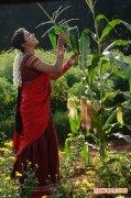 Tamil Actress Saranya 5964