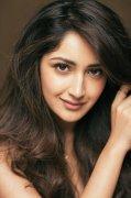 2019 Album Sayyeshaa Indian Actress 8106