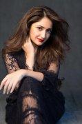 South Actress Sayyeshaa New Wallpaper 4779