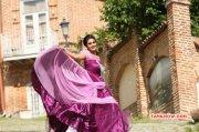 Recent Wallpaper Movie Actress Shamili 8114