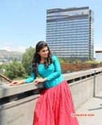 Recent Wallpaper Shamili Film Actress 6569