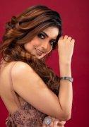 Gallery Shirin Kanchwala Tamil Actress 7783