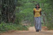 Shivada Nair 4781