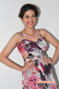 Latest Pictures Shraddha Das Tamil Movie Actress 4263