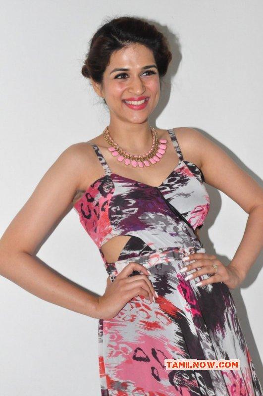 Latest Pictures Shraddha Das Tamil Movie Actress 4263