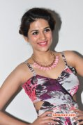 Mar 2016 Gallery Shraddha Das Film Actress 1081