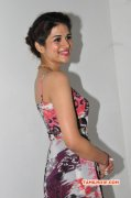 Movie Actress Shraddha Das Recent Images 2346