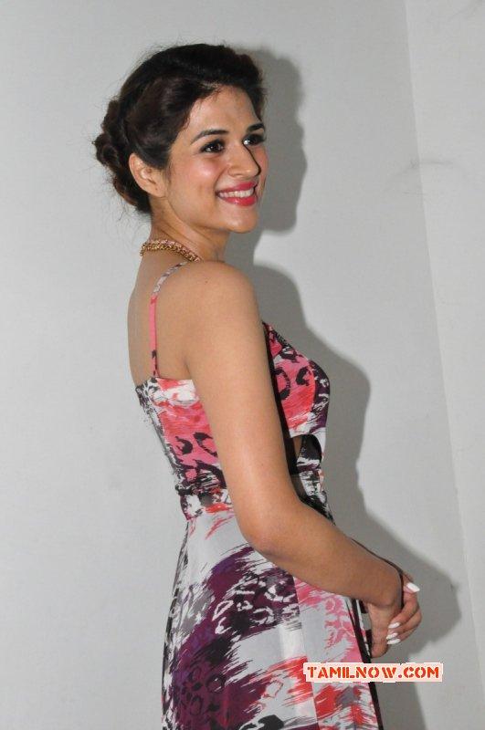 Movie Actress Shraddha Das Recent Images 2346