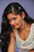 Recent Still South Actress Shreya Vyas 2093