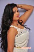 Shreya Vyas Heroine Aug 2015 Wallpapers 5310