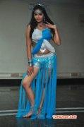 Tamil Heroine Shreya Vyas New Gallery 3701