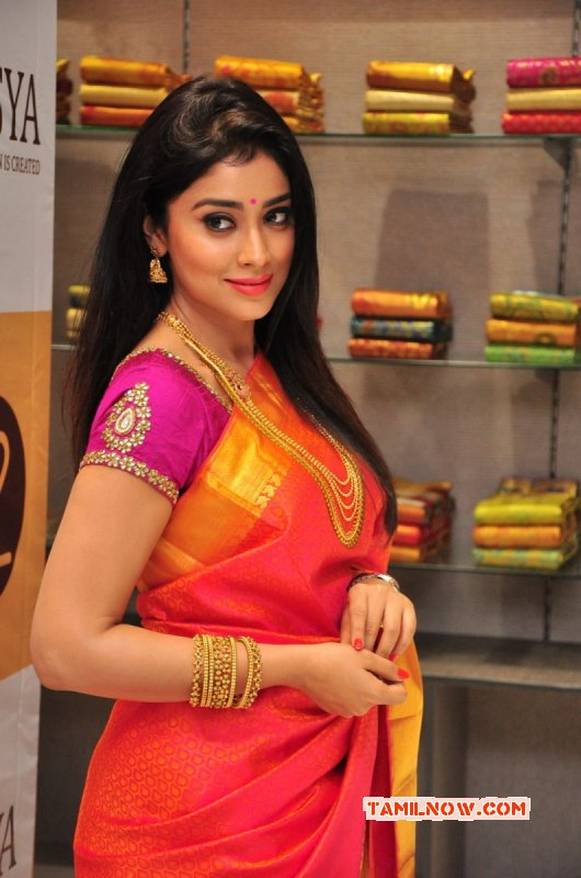 2015 Image Shriya Saran Film Actress 2025