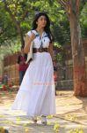 Actress Shriya Saran 1303