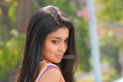 Actress Shriya Saran 1383