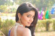 Actress Shriya Saran 5404