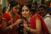 Actress Shriya Saran 6234