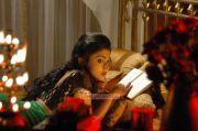 Actress Shriya Saran 8677