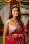 Actress Shriya Saran 8718