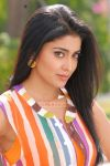 Actress Shriya Saran Photos 1630