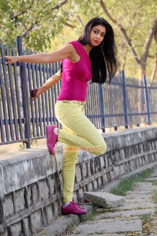 Actress Shriya Saran Photos 8043