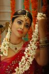 Actress Shriya Saran Stills 2962