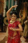 Actress Shriya Saran Stills 3135