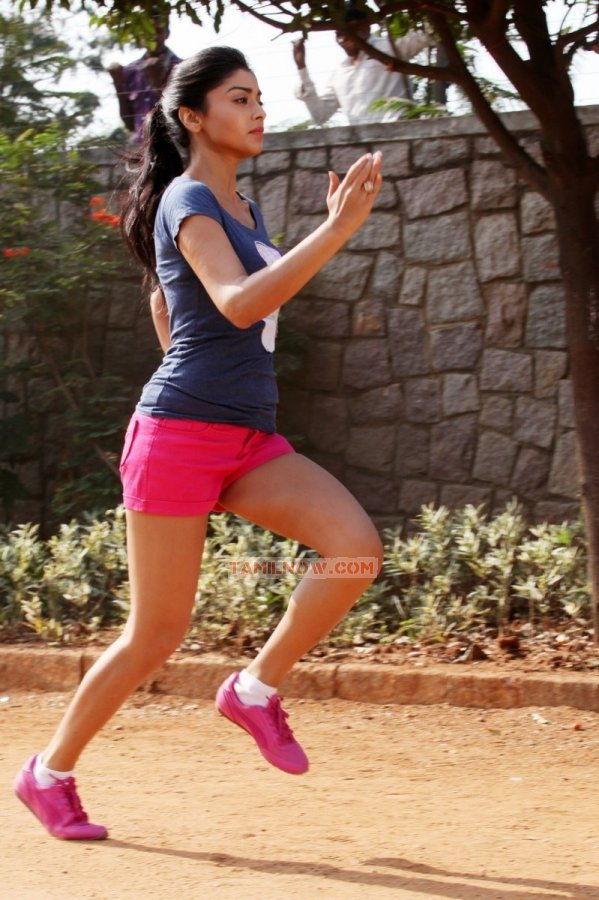 Actress Shriya Saran Stills 4171
