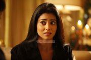 Actress Shriya Saran Stills 9599