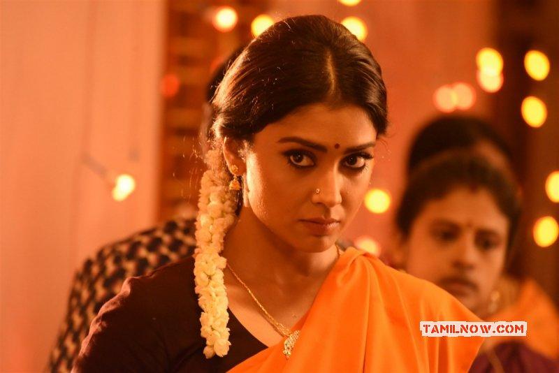 Cinema Actress Shriya Saran Recent Albums 8049